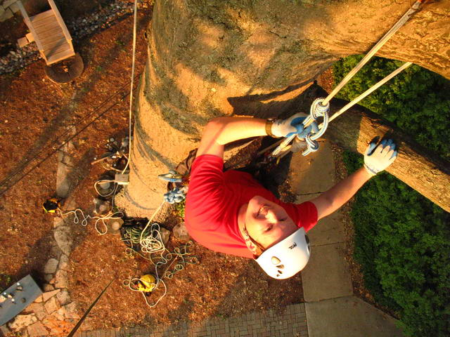 Climbing With Split Tail